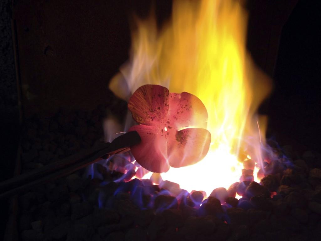Poppy-fire-01